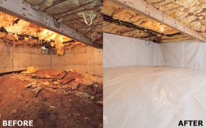 Crawl Space Before and After!